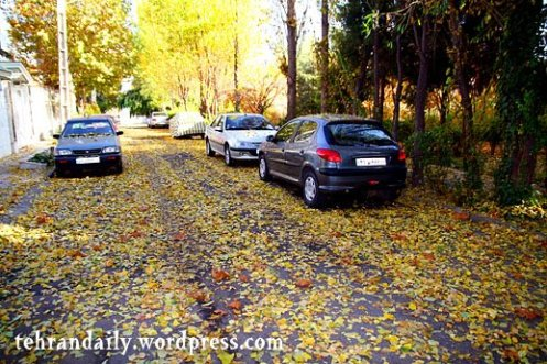 Autumn in Tehran Towns