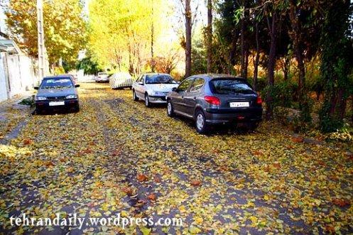 Autumn in Tehran Towns