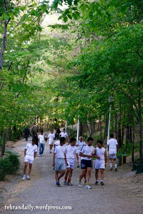 Taleghani Park