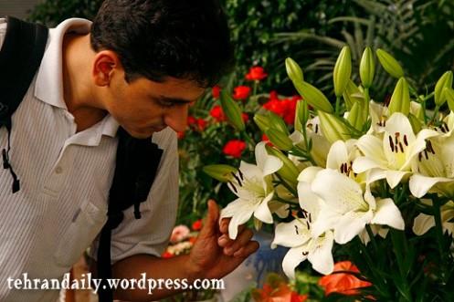 Flower Exhibition
