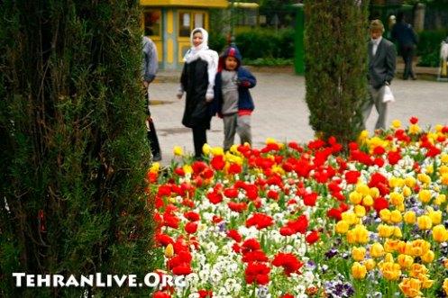 Park-e Shahr