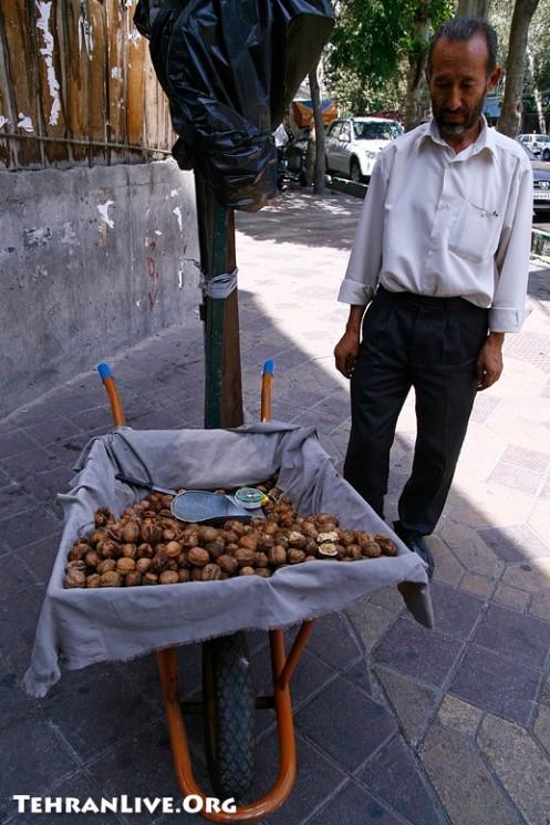 Street Walnut Seller