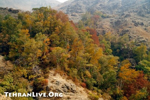 Autumn in Darband