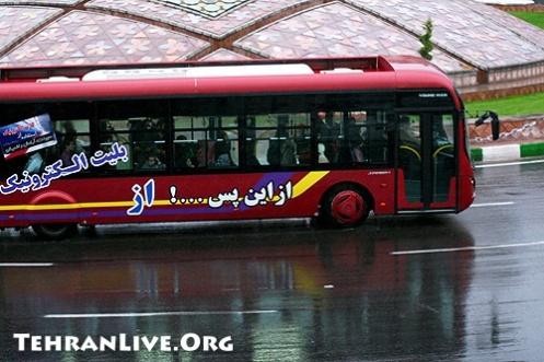 Tehran : Umbrellas