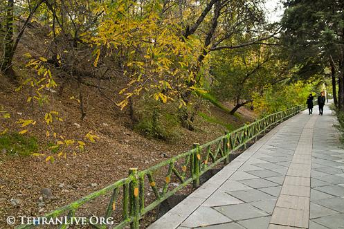 Autumn arrived Tehran!