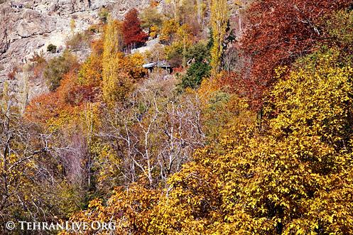 Autumn In Darband