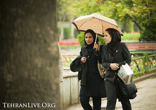 rain_and_umbrella_5