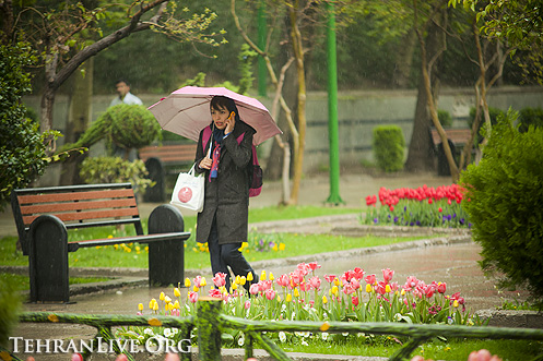 rain_and_umbrella_4