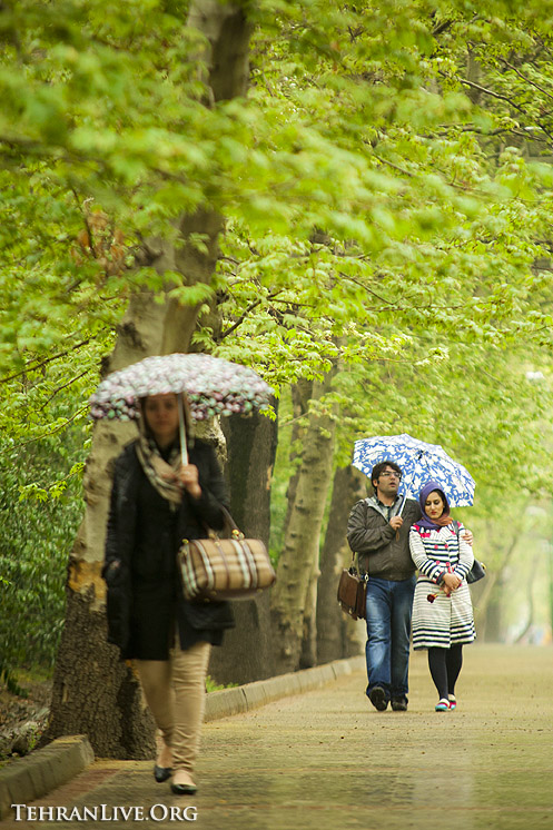 rain_and_umbrella_1