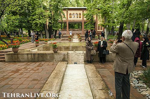 iranian_garden_tulips_9