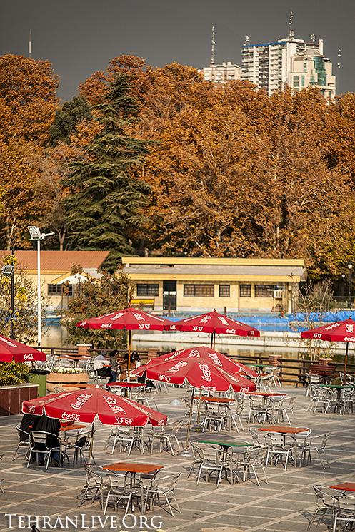 fall_in_tehran_2014_10