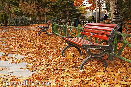 fall_in_tehran_2014_12