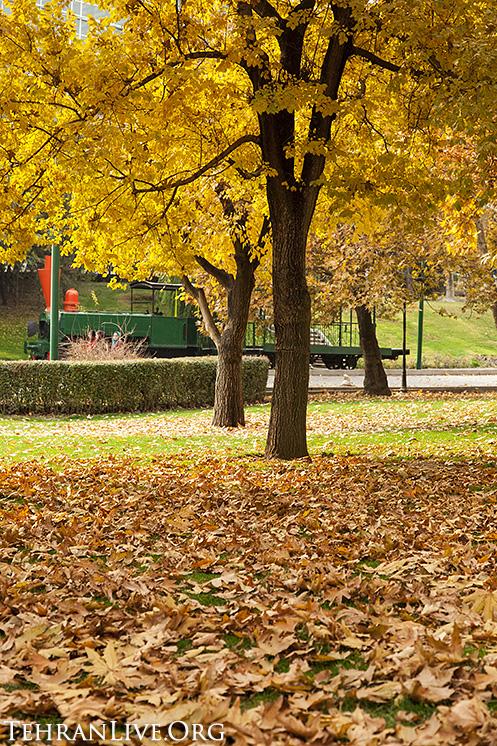 fall_in_tehran_2014_6