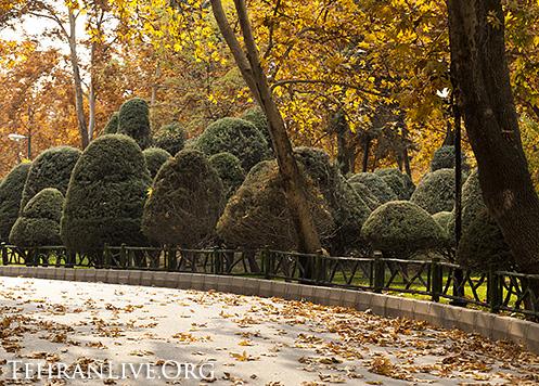 fall_in_tehran_2014_7