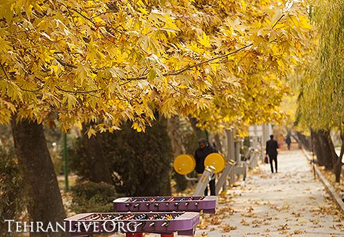fall_in_tehran_2014_8